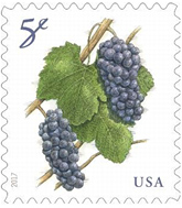 USPS Grapes 5 cent stamp, 2017